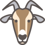 azienda-agricola-serec-ovini-caprini